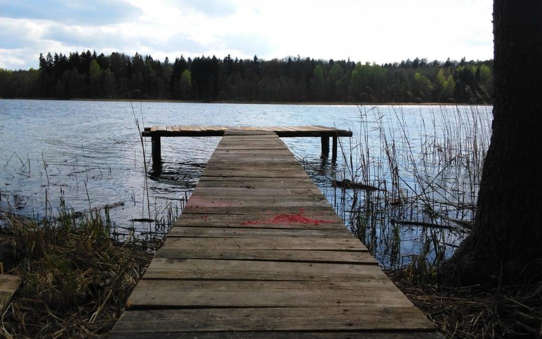 Informacja Starostwa Powiatowego w Wolsztynie na temat nielegalnych pomostów na jeziorze Osłoninskim i Górskim.