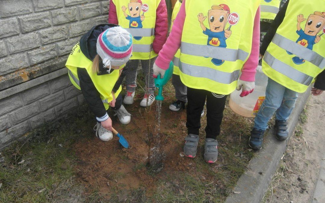 Akcja sadzenia drzewek w Nowej Wsi