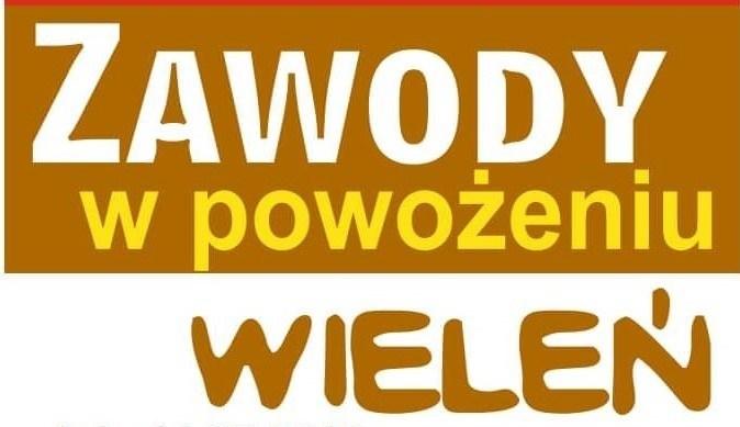 Zawody w powożeniu- 14.07.2019 Wieleń