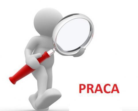 Ogłoszenie naboru na stanowisko Dyrektora Gminnego Żłobka w Błotnicy.